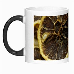 Lemon Dried Fruit Orange Isolated Morph Mugs by Nexatart