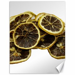 Lemon Dried Fruit Orange Isolated Canvas 18  X 24