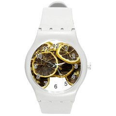 Lemon Dried Fruit Orange Isolated Round Plastic Sport Watch (m)