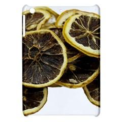 Lemon Dried Fruit Orange Isolated Apple Ipad Mini Hardshell Case