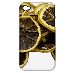 Lemon Dried Fruit Orange Isolated Apple Iphone 4/4s Hardshell Case (pc+silicone) by Nexatart