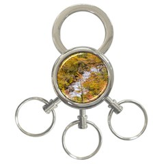 Colored Forest Landscape Scene, Patagonia   Argentina 3 Ring Key Chains by dflcprints