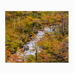 Colored Forest Landscape Scene, Patagonia   Argentina Small Glasses Cloth (2 Side) by dflcprints