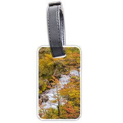 Colored Forest Landscape Scene, Patagonia   Argentina Luggage Tags (one Side)  by dflcprints