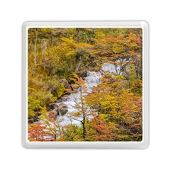 Colored Forest Landscape Scene, Patagonia   Argentina Memory Card Reader (square)  by dflcprints