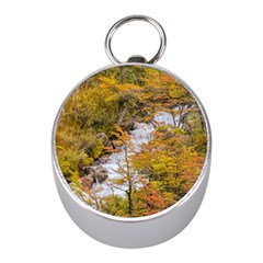 Colored Forest Landscape Scene, Patagonia   Argentina Mini Silver Compasses by dflcprints