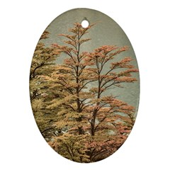 Landscape Scene Colored Trees At Glacier Lake  Patagonia Argentina Ornament (oval) by dflcprints