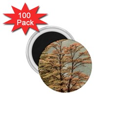 Landscape Scene Colored Trees At Glacier Lake  Patagonia Argentina 1 75  Magnets (100 Pack)  by dflcprints