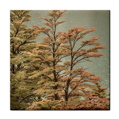 Landscape Scene Colored Trees At Glacier Lake  Patagonia Argentina Face Towel by dflcprints