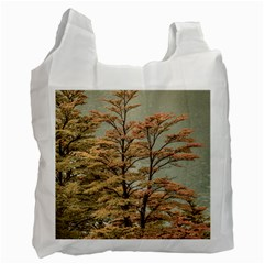 Landscape Scene Colored Trees At Glacier Lake  Patagonia Argentina Recycle Bag (two Side)  by dflcprints