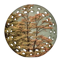 Landscape Scene Colored Trees At Glacier Lake  Patagonia Argentina Ornament (round Filigree) by dflcprints