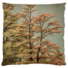 Landscape Scene Colored Trees At Glacier Lake  Patagonia Argentina Large Flano Cushion Case (two Sides) by dflcprints