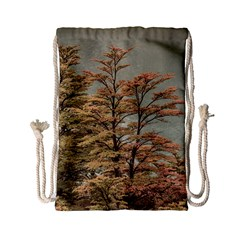 Landscape Scene Colored Trees At Glacier Lake  Patagonia Argentina Drawstring Bag (small) by dflcprints