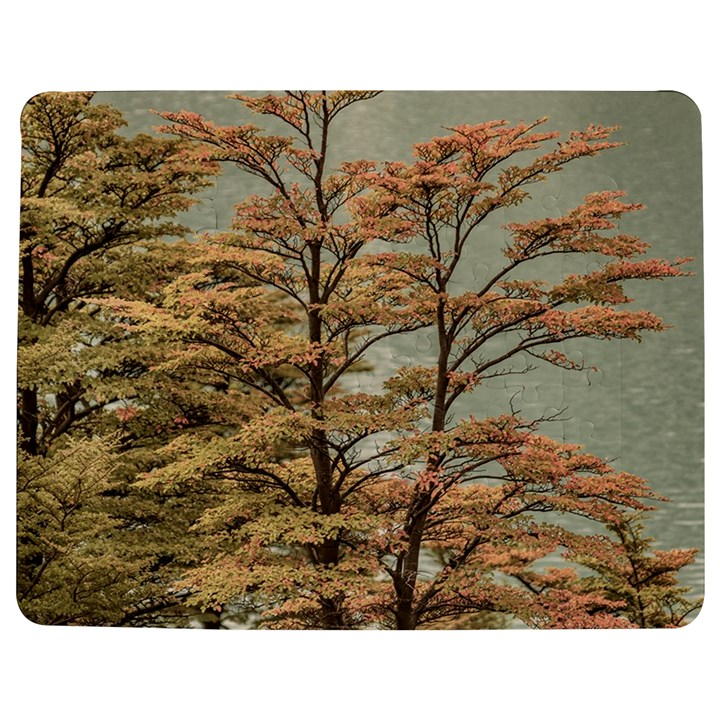 Landscape Scene Colored Trees At Glacier Lake  Patagonia Argentina Jigsaw Puzzle Photo Stand (Rectangular)