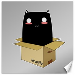 Black Cat In A Box Canvas 16  X 16   by Catifornia