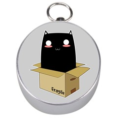Black Cat In A Box Silver Compasses by Catifornia