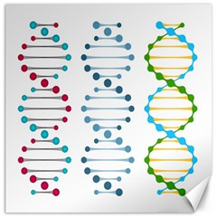 Genetic Dna Blood Flow Cells Canvas 16  X 16   by Mariart