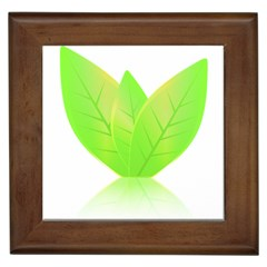 Leaves Green Nature Reflection Framed Tiles