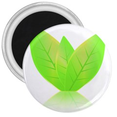 Leaves Green Nature Reflection 3  Magnets