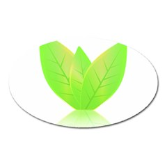 Leaves Green Nature Reflection Oval Magnet