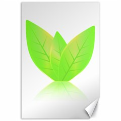 Leaves Green Nature Reflection Canvas 24  X 36  by Nexatart