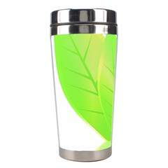 Leaves Green Nature Reflection Stainless Steel Travel Tumblers
