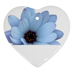 Daisy Flower Floral Plant Summer Heart Ornament (two Sides) by Nexatart