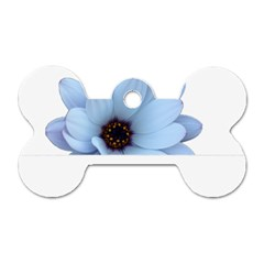 Daisy Flower Floral Plant Summer Dog Tag Bone (two Sides) by Nexatart