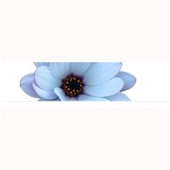 Daisy Flower Floral Plant Summer Large Bar Mats by Nexatart
