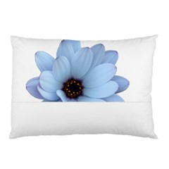Daisy Flower Floral Plant Summer Pillow Case by Nexatart