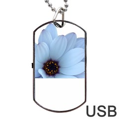 Daisy Flower Floral Plant Summer Dog Tag Usb Flash (one Side) by Nexatart