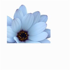 Daisy Flower Floral Plant Summer Small Garden Flag (two Sides) by Nexatart