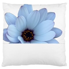 Daisy Flower Floral Plant Summer Large Cushion Case (two Sides) by Nexatart