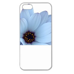 Daisy Flower Floral Plant Summer Apple Seamless Iphone 5 Case (clear) by Nexatart