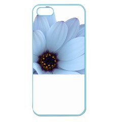 Daisy Flower Floral Plant Summer Apple Seamless Iphone 5 Case (color) by Nexatart