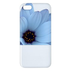 Daisy Flower Floral Plant Summer Apple Iphone 5 Premium Hardshell Case by Nexatart