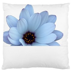 Daisy Flower Floral Plant Summer Large Flano Cushion Case (one Side) by Nexatart