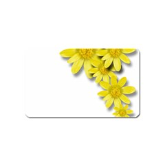 Flowers Spring Yellow Spring Onion Magnet (name Card) by Nexatart