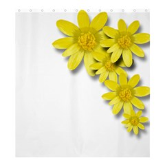 Flowers Spring Yellow Spring Onion Shower Curtain 66  X 72  (large)