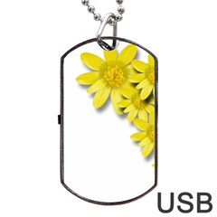 Flowers Spring Yellow Spring Onion Dog Tag Usb Flash (one Side)