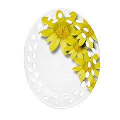 Flowers Spring Yellow Spring Onion Ornament (oval Filigree)