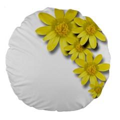 Flowers Spring Yellow Spring Onion Large 18  Premium Round Cushions by Nexatart