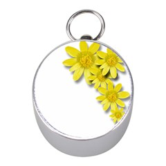 Flowers Spring Yellow Spring Onion Mini Silver Compasses