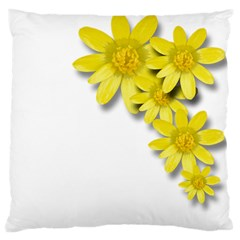 Flowers Spring Yellow Spring Onion Large Flano Cushion Case (two Sides)