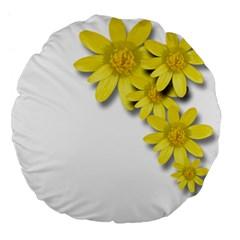 Flowers Spring Yellow Spring Onion Large 18  Premium Flano Round Cushions by Nexatart
