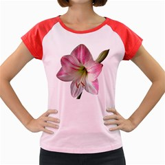 Flower Blossom Bloom Amaryllis Women s Cap Sleeve T Shirt