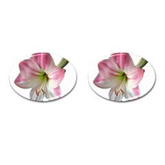 Flower Blossom Bloom Amaryllis Cufflinks (oval)