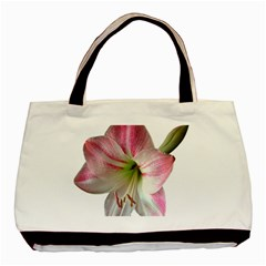 Flower Blossom Bloom Amaryllis Basic Tote Bag (two Sides) by Nexatart