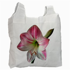 Flower Blossom Bloom Amaryllis Recycle Bag (one Side)