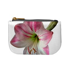 Flower Blossom Bloom Amaryllis Mini Coin Purses